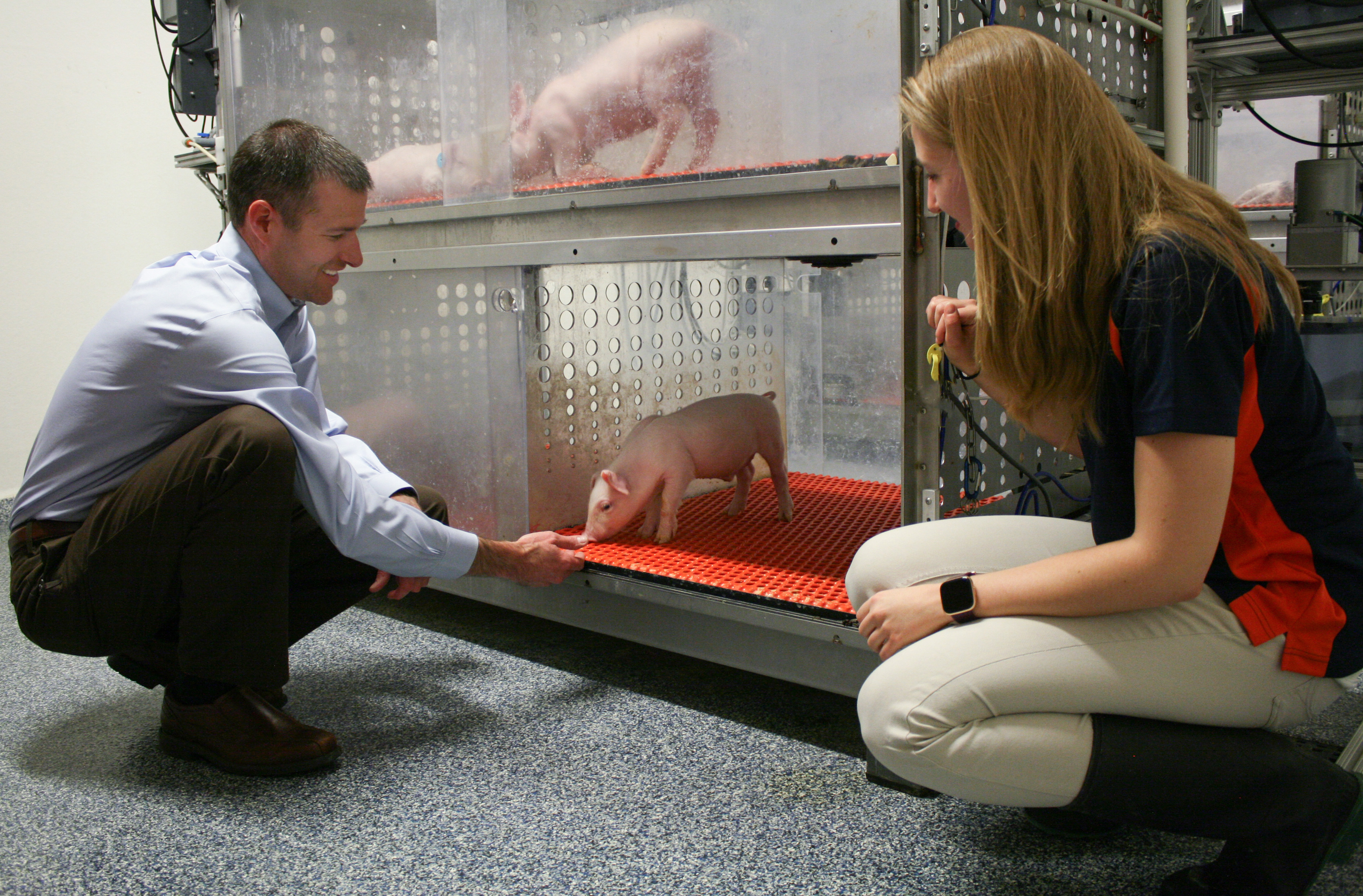 Ryan and Joanne with pigs at PNCL